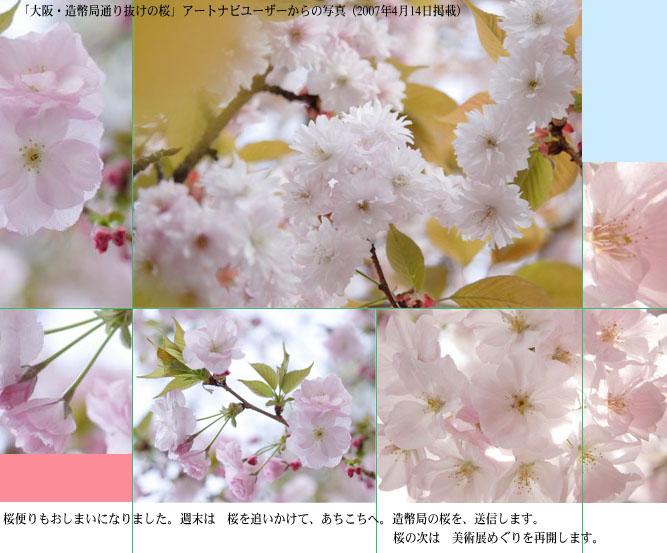 鈴木松年の画像 p1_32